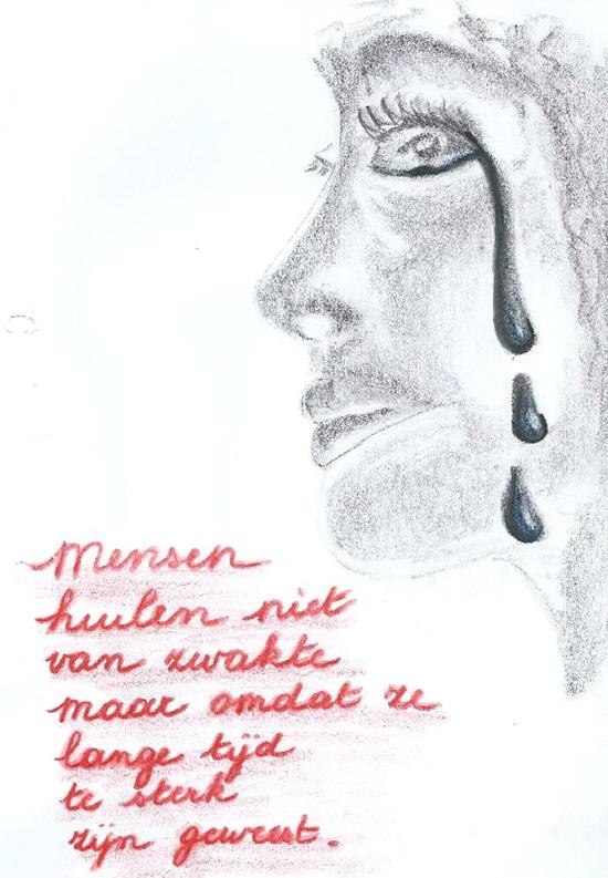 Bundel Grijs Blauw: 2013
