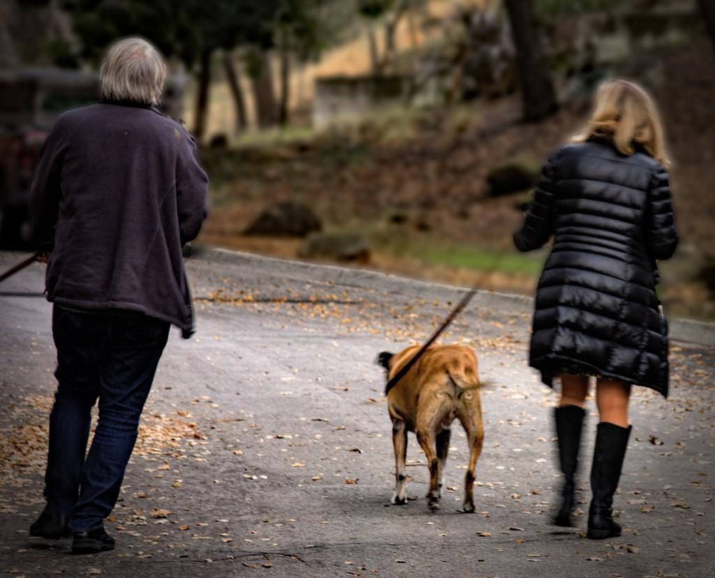 Doe een wandeling om even bij te komen!